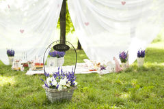 Decor on nature. Design a picnic on the grass Royalty Free Stock Image