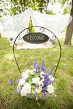 Decor on nature. Design a picnic on the grass Royalty Free Stock Photography
