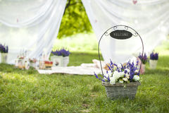 Decor on nature. Design a picnic on the grass Stock Image