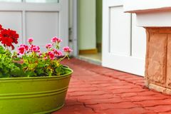 The decor outside the house, pink and red geraniums in a metal green basin-vase stock photo