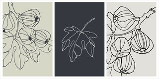 Free Decor Printable Art. Set Of Hand Drawn Vector Illustrations Of Fig Fruits On Branches Stock Photography - 217110342