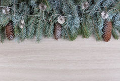 Decor winter holidays of spruce branches covered with frost with cones and silvery beads Royalty Free Stock Photography