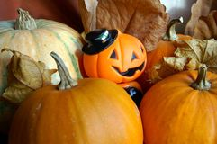 Decoração à noite da celebração de Halloween Imagem de Stock Royalty Free