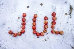 Decoração acolhedor do Natal com maçãs Fotografia de Stock Royalty Free