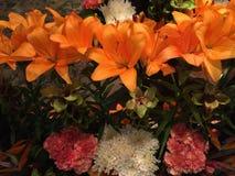 Decoração alaranjada fresca e bonita das flores fotos de stock