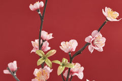 A decoração chinesa de ano novo Fotografia de Stock