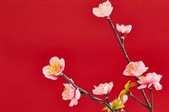 A decoração chinesa de ano novo Imagem de Stock