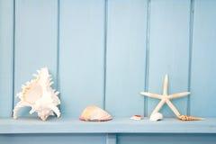 Decoração com marisco, imagens de stock royalty free