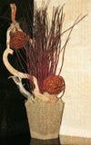 Decoração com plantas secadas Fotografia de Stock Royalty Free