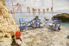 A decoração com polvo é secada no sol contra o mar, Fotos de Stock