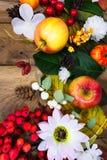 Decoração da ação de graças com a margarida de seda das maçãs, a rrowan e a branca Fotografia de Stock