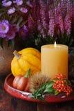 Decoração da ação de graças do outono Foto de Stock