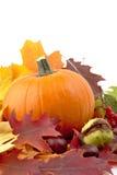 Decoração da abóbora com as folhas de outono para o dia da ação de graças no branco Foto de Stock Royalty Free