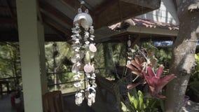Decoração da decoração de Shell, Tailândia, natureza, fundo, natural, mar, decoração video estoque