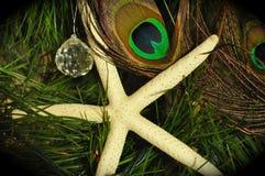 Decoração da estrela do mar Foto de Stock Royalty Free
