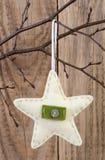 Decoração da estrela do Natal Fotos de Stock Royalty Free