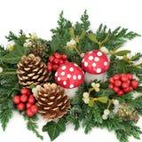 Decoração da fantasia do Natal Fotos de Stock