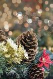 Decoração da festão do Natal com Poinsettia Foto de Stock Royalty Free