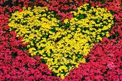 Decoração da flor do sinal do coração, Valentim Imagens de Stock