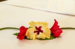Decoração da flor em uma sala de hotel fotografia de stock royalty free