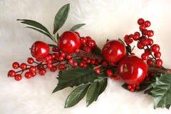 Decoração da fruta do Natal Fotos de Stock Royalty Free