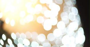 Decoração da luz de Chrismas vídeos de arquivo