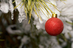 decoração da Natal-árvore Imagens de Stock Royalty Free