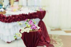 Decoração da orquídea Imagens de Stock Royalty Free