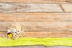 A decoração da Páscoa de Happ com ovos da páscoa aninha-se no fundo de madeira rústico com espaço da cópia Fotografia de Stock Royalty Free