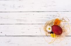 Decoração da Páscoa, pouco ninho da palha com ovo e flores no fundo de madeira branco Imagem de Stock
