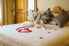 Decoração da pétala da cisne e da flor do amor Imagem de Stock Royalty Free