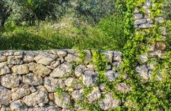 Decoração da parede de pedras Fotografia de Stock Royalty Free