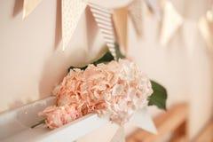 Decoração da sala para a celebração do aniversário Close up macro da luz macia macia - hortênsia cor-de-rosa Foto de Stock