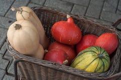 Decoração das abóboras na cesta para o Dia das Bruxas Imagem de Stock