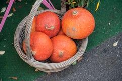 Decoração das abóboras na cesta para o Dia das Bruxas Imagem de Stock Royalty Free