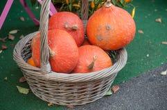 Decoração das abóboras na cesta para o Dia das Bruxas Fotos de Stock