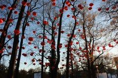 Decoração das lanternas do Natal em Lyon França imagens de stock royalty free