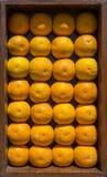 Decoração das laranjas na parede Fotos de Stock Royalty Free