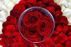 Decoração das rosas vermelhas Fotografia de Stock Royalty Free