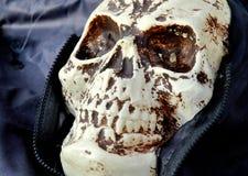 Decoração de Dia das Bruxas fora Fotos de Stock Royalty Free
