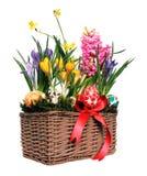 Decoração de Easter Foto de Stock
