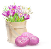 Decoração de Easter com açafrões e os ovos cor-de-rosa Imagem de Stock Royalty Free