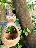 Decoração de jardinagem Imagem de Stock