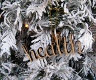 Decoração de madeira do entalhe da palavra da saúde Imagem de Stock Royalty Free