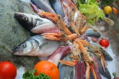 Decoração do alimento de mar Imagens de Stock