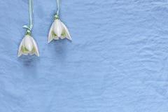 Decoração do casamento Flores cerâmicas brancas em um fundo azul da tela Fotos de Stock Royalty Free