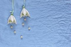 Decoração do casamento Flores cerâmicas brancas, pérolas em vagabundos de uma tela do azul Imagem de Stock Royalty Free