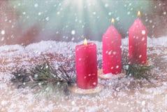 A decoração do inverno com os mandarino e velas e abeto ardentes ramifica Contra o contexto da neve Foto de Stock Royalty Free