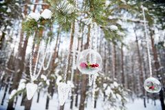 Decoração do inverno para um casamento Composição floral de rosas vermelhas Fotografia de Stock