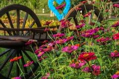 Decoração do jardim Foto de Stock